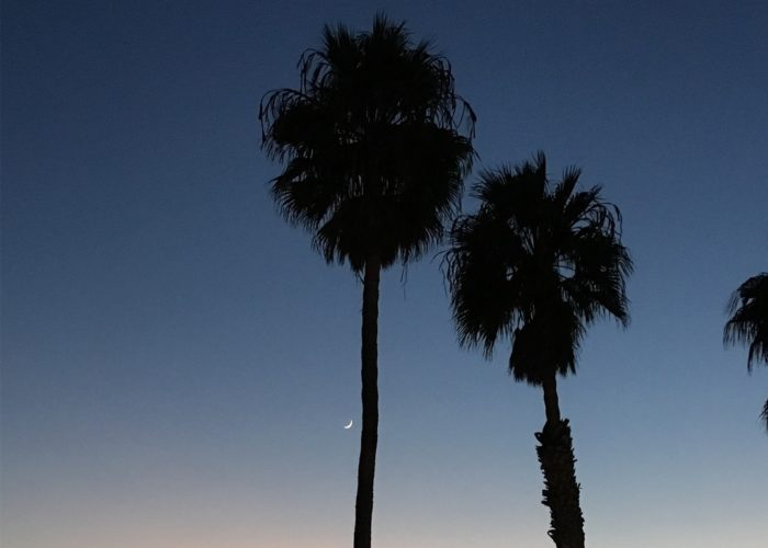The Sunset at Venice Beach #instapassport #thecreative #artofvisuals #aroundtheworldpix…